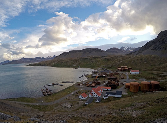 Grytviken seen from above.